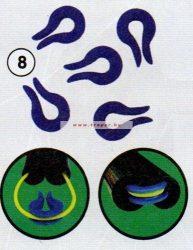 Traper Gumivédő Patkó (5db/csomag)
